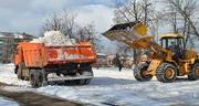 Вывезем мусор,  снег